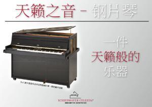 Chinese PDF brochure about the Celesta